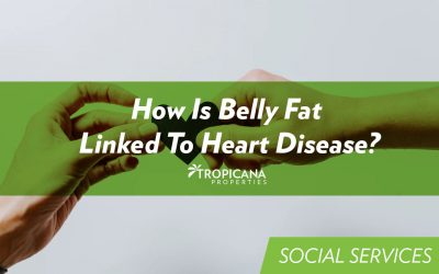 How Is Belly Fat Linked To Heart Disease?