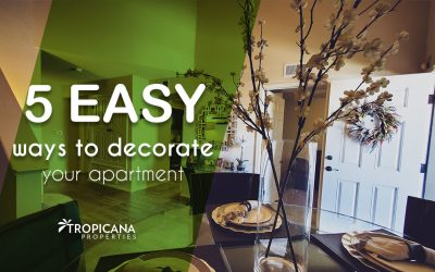 5 easy ways to decorate your apartment