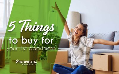 5 Things to Buy for Your First Apartment