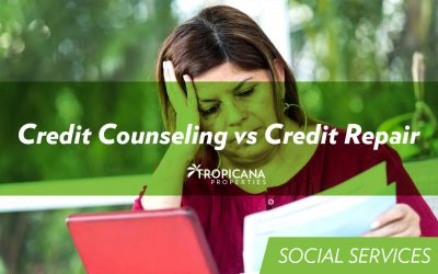 Credit Counseling vs Credit Repair